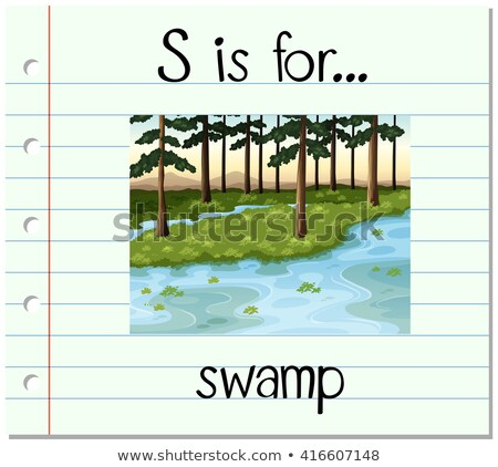 flashcard letter s is for swamp stock photo © bluering