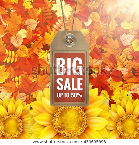 Sunflower on autumn foliage with sale tag. EPS 10 Stock photo © beholdereye