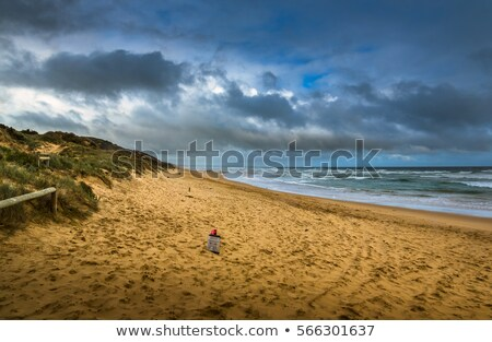 sandy beach and stormy sky Stock photo © Mikko