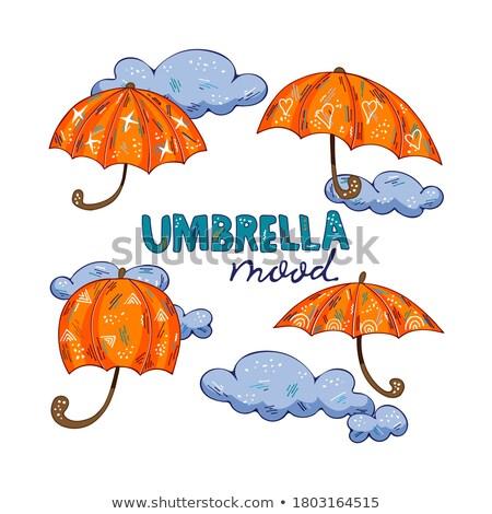 少年 スタンド ルーム 嵐の 雨の ストックフォト © psychoshadow