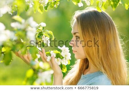 портрет красивая девушка цветения деревья пышный саду Сток-фото © tekso