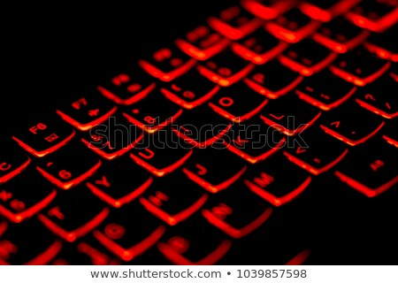 protection   concept on red keyboard button stock photo © tashatuvango