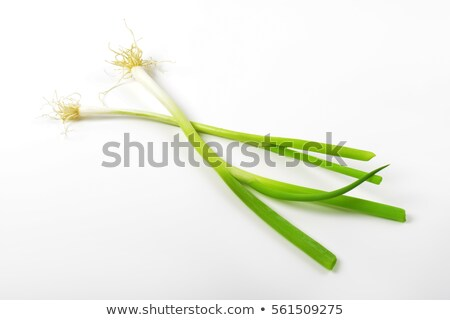 two bunches of spring onion Stock photo © Digifoodstock