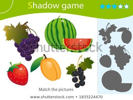 Színes gyümölcs árnyék összeillő játék gyerekek Stock fotó © adrian_n