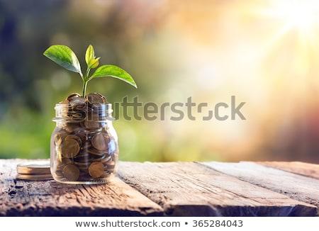 Foto stock: Jarra · moedas · financiar · moeda · ninguém