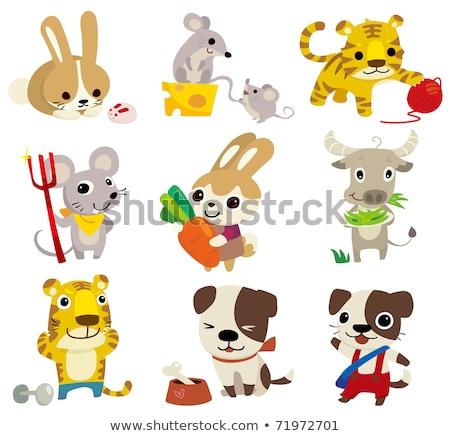 Cartoon conejo pesas ilustración Foto stock © cthoman