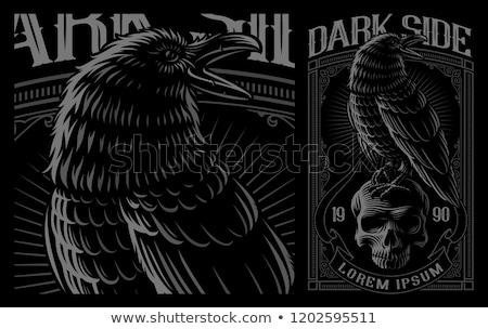 kuzgun · maskot · kafa · siyah · tüy · siluet - stok fotoğraf © cthoman
