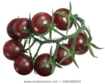 Tondo Nero tomatoes cluster tov, top, paths Stock photo © maxsol7