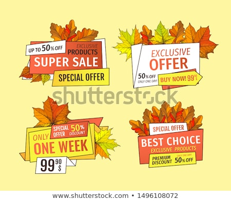 Prices off on Thanksgiving Day Exclusive Offer Set Stock photo © robuart