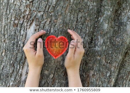 Environmental Responsibility. Ecology For Climate Change or Glob Stock photo © olivier_le_moal