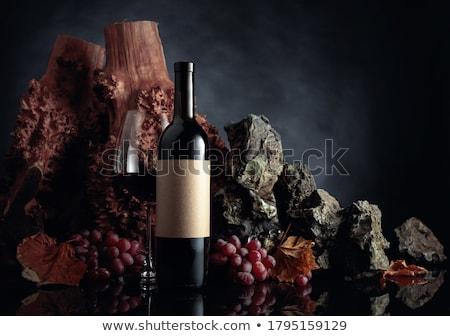 Vetro bottiglie etichetta line up sottile Foto d'archivio © lichtmeister