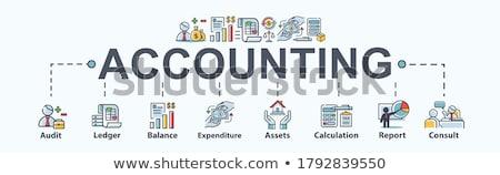 Finansowych rachunkowości minimalny banner wektora Zdjęcia stock © pikepicture