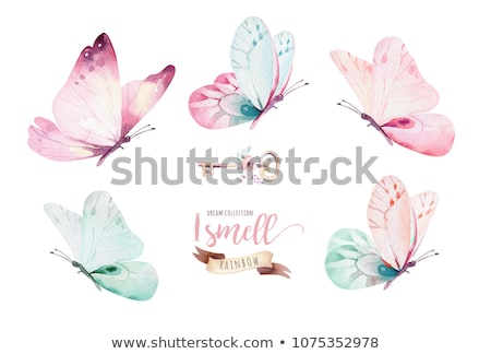 Girl with flowers and butterfly on white background Stock photo © bluering