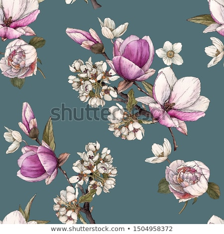 Blooming peony flowers as floral art on violet background, wedding decor and luxury branding Stock photo © Anneleven