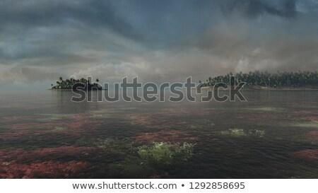 3d render ada puslu akşam güneş deniz Stok fotoğraf © Melvin07