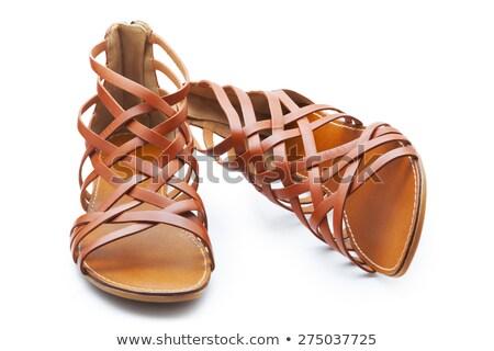пару коричневый кожа женщины сандалии изолированный Сток-фото © digitalr