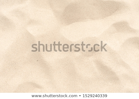 Natural beach sand ripples abstract background. Stock photo © latent