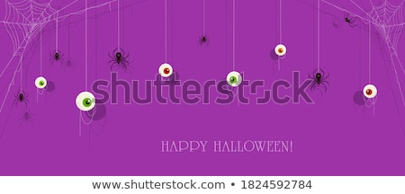 kert · pók · természet · háló · kék · állat - stock fotó © sweetcrisis
