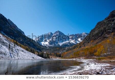 Sprinkle of Aspen leaves Stock photo © emattil