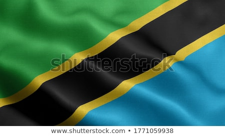 Politischen Flagge Tansania Welt Land Stock foto © perysty