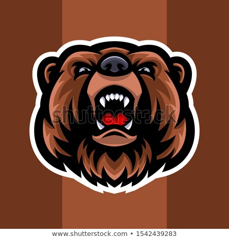 Grizzly Bear Mascot Head Vector Graphic Stock photo © chromaco