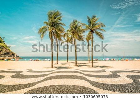 Photo stock: Trottoir · plage · bois · passerelle · madère