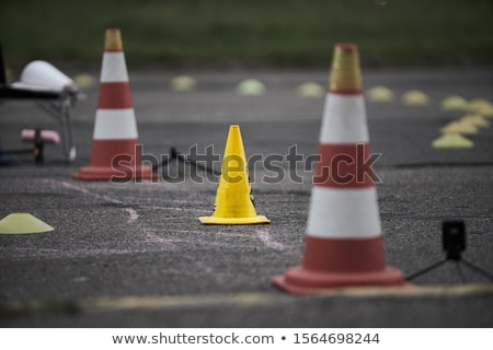 asfalt · weg · lopen · bos · boom - stockfoto © kuzma