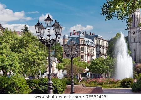 Central Park fontein Europa Duitsland bloem water Stockfoto © g215
