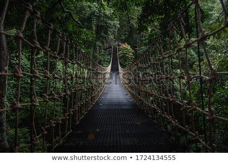 Rope walkway Stock photo © Witthaya