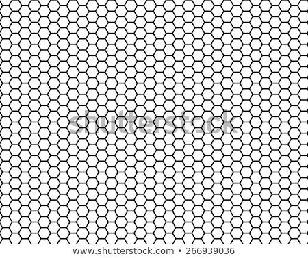 Seamlessly honeycomb pattern. Stock photo © Leonardi