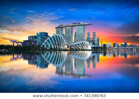 panorámakép · kilátás · Szingapúr · elképesztő · üzlet · központ - stock fotó © joyr