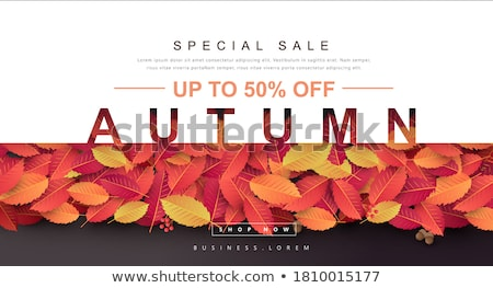 Autumn sale card, vector illustration Stock photo © carodi