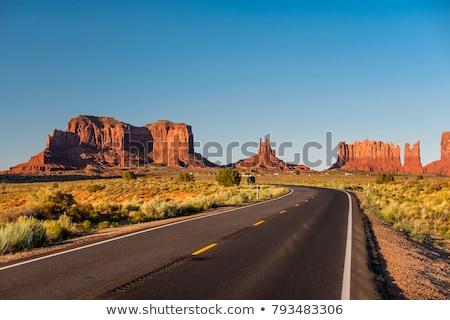 Curved Desert Road Stock photo © emattil