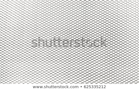 Metal Grate Stock photo © axstokes