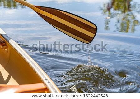 wooden canoe paddle stock photo © pixelsaway