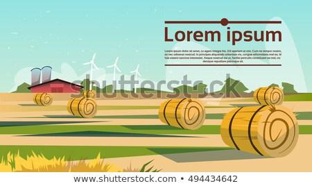 stro · baal · zonsondergang · oogst · hond · land - stockfoto © meinzahn