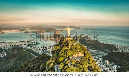 Rio de Janeiro Brasil céu árvore cidade paisagem Foto stock © xura