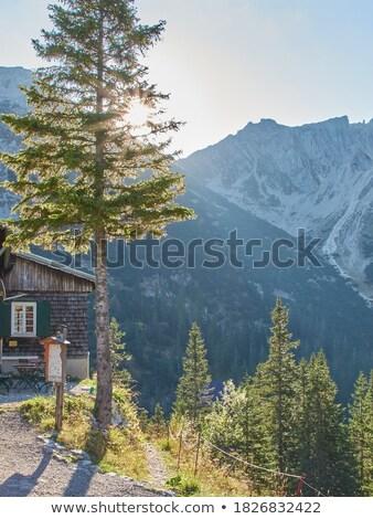 горные Альпы лет снега облака природы Сток-фото © nikkos