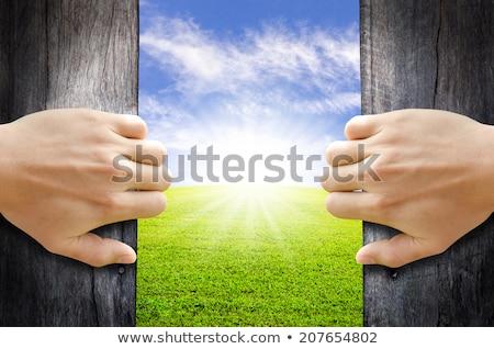Abrir a porta natureza paisagem negócio grama parede Foto stock © cherezoff