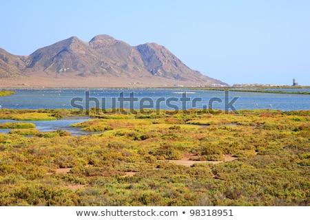 salt flats in Cabo de Gata-Nijar Natural Park, in Spain Stock photo © nito