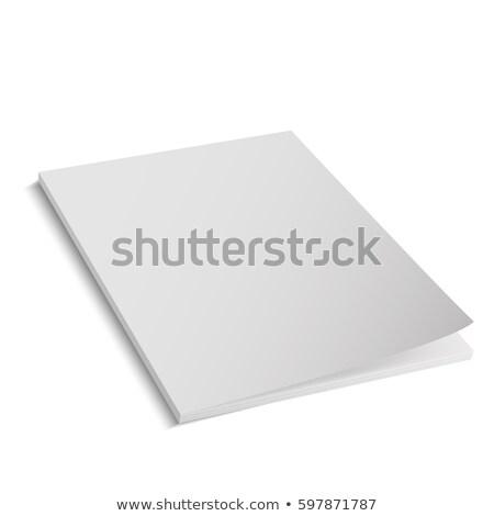 Documento ícone cinza isolado branco Foto stock © zeffss