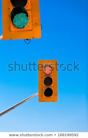 Ellentmondás piros zöld jel út erdő Stock fotó © Mikko