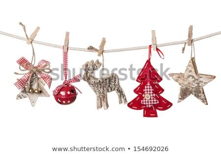 Tree Clothespins isolated Stock photo © jordanrusev