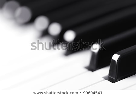 abstract blur of Piano Keyboard synthesizer closeup key frontal  Stock photo © FrameAngel