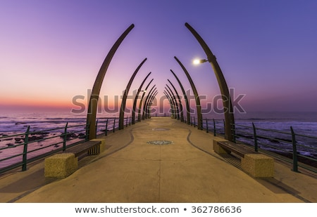 Durban in south africa Stock photo © njaj