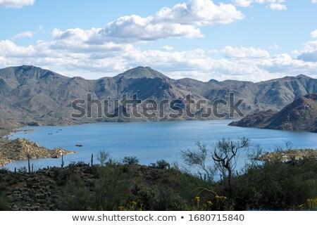 Jezioro Arizona Zdjęcia stock © JamiRae