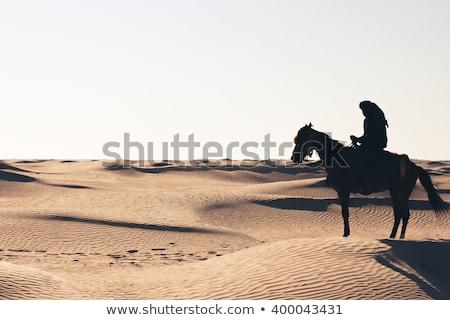 человека верхом пустыне иллюстрация фермы силуэта Сток-фото © adrenalina