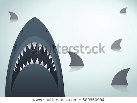 zangado · tubarão · diversão · desenho · animado · estilizado · água - foto stock © robuart