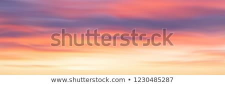 vector sunset background stock photo © fresh_5265954