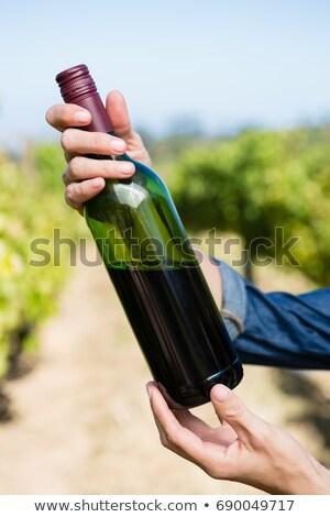 Feminino uvas vinha retrato feliz Foto stock © wavebreak_media